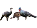 Cherokee Sports Molded Head Flock Inflatable Turkey Decoys Pack of 3