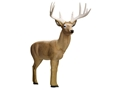 Rinehart Factory Second Booner Buck 3-D Archery Target