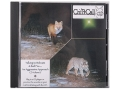 "Product detail of Crit'R Call ""Volume 5: Talking to Bobcats & Red Fox, An Aggressive Approach"" Predator Calling Audio CD"