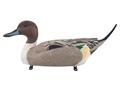 Drake Breeze-Ryder Pintail Magnum Duck Decoy Pack of 6
