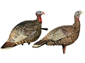 Avian X LCD Rio Grande Hen Lookout and Jake Turkey Decoy Combo