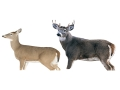 Product detail of Montana Decoy Whitetail Dream Team Deer Decoy Combo