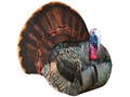 Product detail of Montana Decoy Papa Strut 3D Tom Turkey Decoy Cotton, Polyester, and Steel