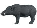 Rinehart Boar- Razorback 3-D Foam Archery Target