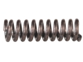 Product detail of Browning Sight Elevator Detent Spring Pro-Target Buck Mark Pistol