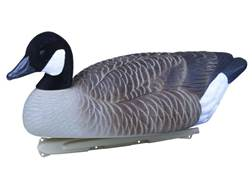 Flambeau Storm Front Weighted Keel Canada Goose Decoys Flocked Heads Pack of 4