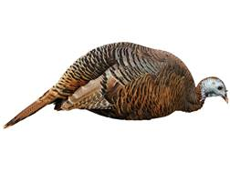 Montana Decoy Dinner Belle Hen Turkey Decoy