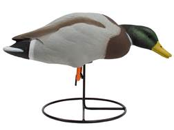 Tanglefree Pro Series Duck Decoy Full Body Mallard Feeder Duck Decoy Pack of 6