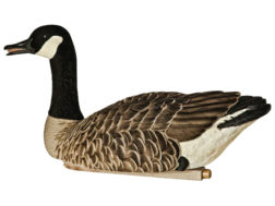 Avian-X Topflight Honkers Floater Canada Goose Decoy Pack of 4
