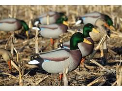 Dakota Decoys X-Treme Full Body Mallard Duck Decoys Pack of 6