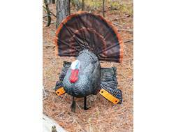 MOJO Scoot N Shoot Turkey Decoy
