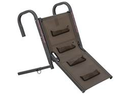 Banded Dog Ramp Brown