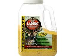 Tecomate King Ladino White Clover Perennial Food Plot Seed 5 lb