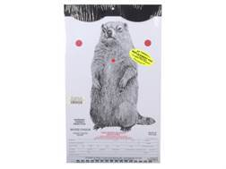 "EZ Target Woodchuck Replacement Target 11"" x 17"" Paper Package of 15"