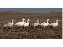 GHG Pro-Grade Full Body Snow Goose Decoys Active Pack of 6