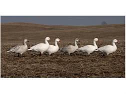 GHG Pro-Grade Full Body Snow Goose Decoys Active Pack of 6