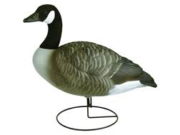 Flambeau Storm Front Full Body Active Pack Canada Goose Decoys Pack of 4