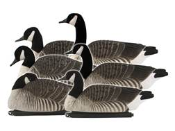 GHG FFD Elite Honker Floater Harvester Pack Canada Goose Decoy Pack of 6