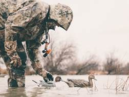 Tanglefree Pro Series Duck Decoy Weighted Keel Pintail Duck Decoy Pack of 6