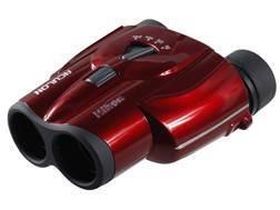 Nikon ACULON Compact Zoom  Binocular 8-24x 25mm Porro Prism