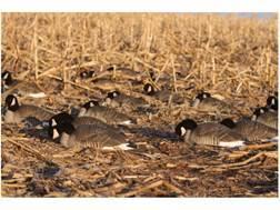 GHG Pro-Grade Honker Goose Shells Harvester Pack of 12