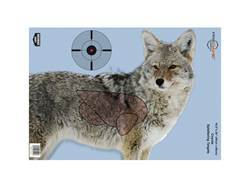 "Birchwood Casey PREGAME Coyote Reactive Target 16.5"" x 24"" Package of 3"