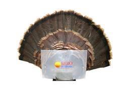 MOJO Fan Press Turkey Tail Drying Mount