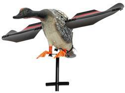 Lucky Duck Super Lucky Gadwall Motion Duck Decoy