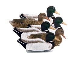 Higdon Magnum Mallard Fully Flocked Weighted Keel Duck Decoys Drakes and Hens Pack of 6