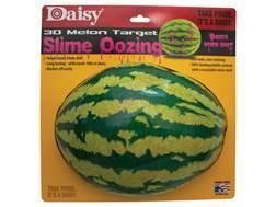 Daisy Oozing 3D Watermelon Target