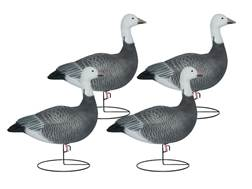 Hard Core Sentry Blue Goose Full Body Decoy Pack of 4