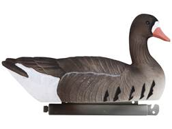 Tanglefree Pro Series Specklebelly Goose Floater Fully Flocked Decoy Pack of 4