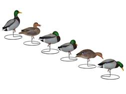 Hard Core Touchdown Mallard Duck Full Body Decoy Pack of 6