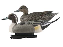 GHG Life-Size Pintail Duck Decoy Pack of 6