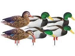 GHG Pro-Grade January Mallard with Flocked Head Drake Harvester Full Body Duck Decoy Pack of 6