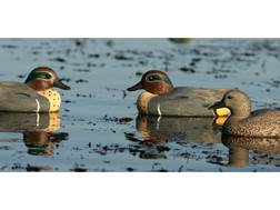 GHG Life-Size Green Wing Teal Duck Decoy Pack of 6