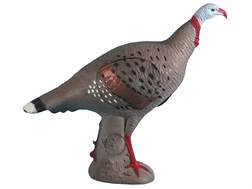 Rinehart Factory Second Tom Turkey 3-D Archery Target
