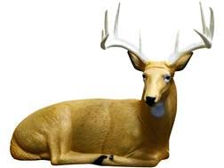 Rinehart Bedded Buck Archery Target