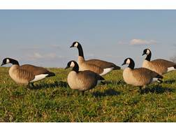 GHG Newbold Lesser Full Body Goose Decoy Pack of 6