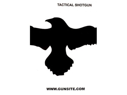 "Gun Video ""Gunsite Tactical Shotgun 1"" DVD"