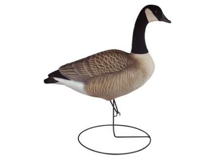 Tanglefree Pro Series Full Body Upright Canada Goose Decoys Flocked Heads and Tails Pack of 6