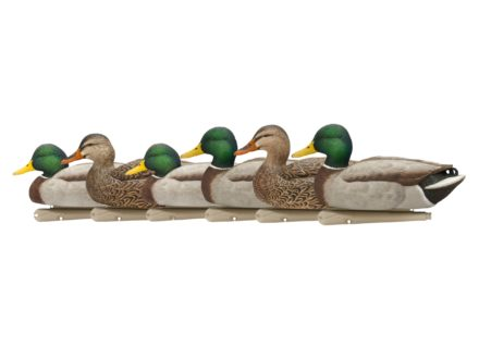 Avian-X Open Water Mallards Weighted Keel Duck Decoy Pack of 6 (4 Drakes, 2 Hens)