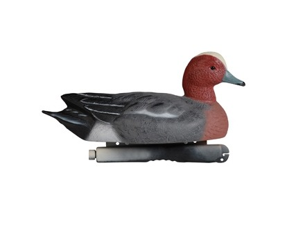 Tanglefree Pro Series Full Body Eurasian Wigeon Duck Decoys Pack of 4