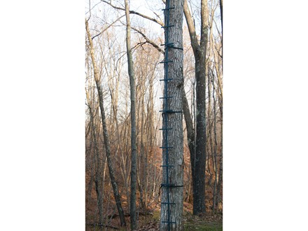 Rivers Edge Rapid Stick 20' Climbing Stick Steel Grey