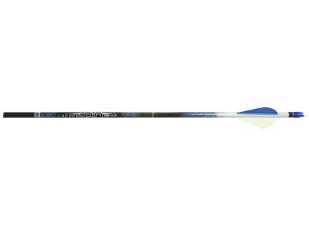 "Easton Carbon Ion Carbon Arrow with 2"" XPV Vanes Pack of 6"