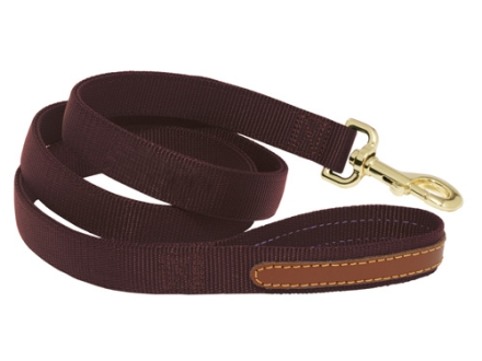 Mud River Duke Dog Leash 4' Nylon and Leather Brown