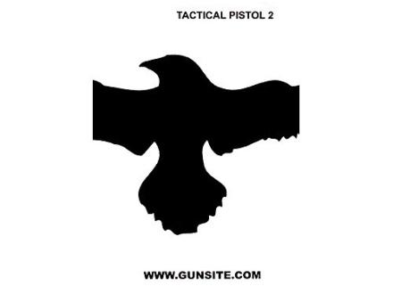 """Gun Video """"Gunsite Tactical Pistol 2"""" DVD"""
