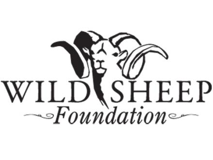 Wild Sheep Foundation 3-Year Membership