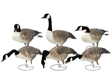 GHG Pro-Grade Fully Flocked Full Body Goose Decoys Harvester Pack of 6
