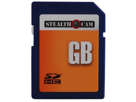 Bulk 4 GB SD Memory Card